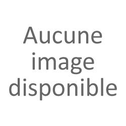 Mousquets 2018 (blanc sec)   Chenin ayant bénéficié d'un viellissement de plusieurs mois en fûts de Chène